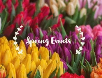spring events in charleston sc